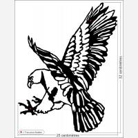 Décor rapace - L'Aigle