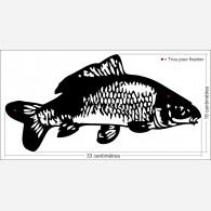 Décor Carpe (poisson)