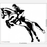 Equitation - Sauts d'obstacle
